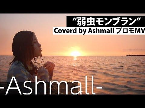 【Part8】弱虫モンブラン-アコギと一緒に歌ってみた【Ashmallの日常】